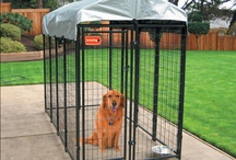 Lucky Dog Kennels / The best kennels ever made!