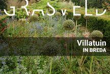 Villatuin te Breda / Een villatuin aan de rand van Breda, waar de omgeving de tuin binnentrekt door de toepassing van een weelderige beplanting. De fruitboomgaard en het zwembad zijn op een eenvoudige wijze geïntegreerd en vormen door de strakke lijnen een mooie tegenhanger voor de losse en grasachtige beplanting