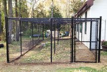 Dog Kennels / Roma Fence has its own line of kennels to keep your pets safe!