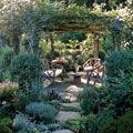 Garden  / Plants, patio, decorating / by Varalyn Kaiser