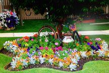 Garden Ideas / by Lynn Benincasa