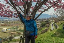 Cycling Adventures in Kyoto and Nara. / I live along the Kizugawa River (木津川)in Joyo-shi, Kyoto Prefecture and enjoy cycling. Using the cycling and walking path along the River I can easily go to Nara Kyoto and Arashiyama and a host of other small spots in this steeped in history area.