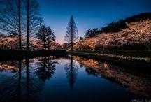 Lugares para visitar en Japón / Los rincones de Japón que no debes perderte.