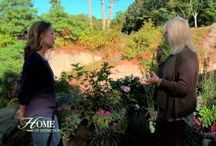 Landscape Design Videos / Collection of CLS and other videos about designing landscape spaces.