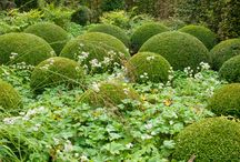 Karens Cornish Garden