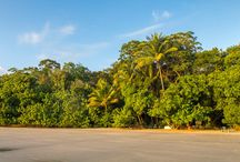 2 day getaway to the Daintree Rainforest from Port Douglas