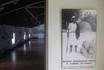 Museo etnológico de Pego / Museo etnológico de Pego