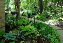 Woodland Shade Garden