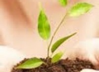 Let's be natural! / by Marla Gates @ www.organic4greenlivings.com