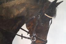 paarden in opdracht