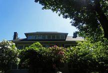 CertainTEED Landmark Prem Moire Black / Jorve CertainTEED Roofing Installation in Seattle.