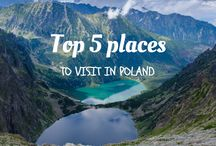 All about Poland / On this borad you can find variable articles or pictures concerning Poland and its culture.