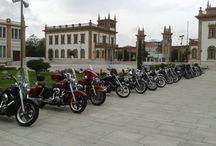 Concentración de Harley Davidson  / Concentración de Harley Davidson en el Museo Automovilístico de Málaga