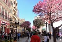 espaços públicos Curitiba