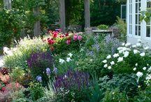 Garden / Inspirasjon
