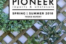 Pioneer Trend Reports