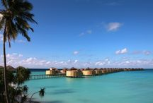 Our Villas / A mix of beachfront and overwater villas with prime views of the ocean. Which one would you stay in?