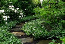 Photos extérieurs et jardins, terrasses...