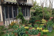 Garden - Important Gardens and Gardeners / by Grace Hensley @ eTilth