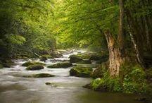 Natureza / Vamos desfrutar do que a vida nos dá!