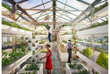 Gardening / greenhouse