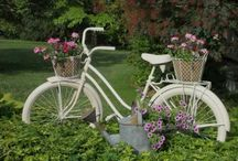 Bikes in the Garden / by Melinda Moore