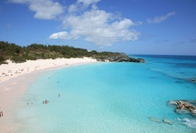 bermuda / by Chris H.