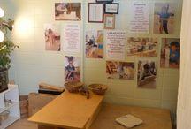 Kindergarten - environment / by Krista Farrell