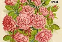 Çiçekciler