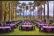 Wedding | Receptions