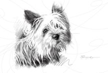 Hector Prado Animals / artwork by hector prado
