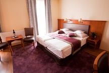 Rooms / We have a wide variety of rooms, look for those which suit you the best!