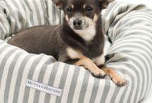 Donut Dog Beds / Luxury range of donut dog beds #dogbeds