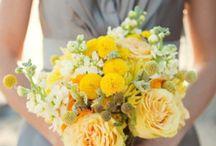 A & B Wedding-Ideas based on their colors / by Ellen Wilson