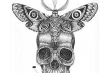 πεταλούδα νεκροκεφαλή