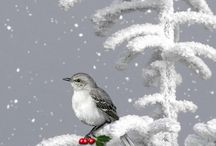 Winter Wonderland / some of the wonderful things about the coolest season