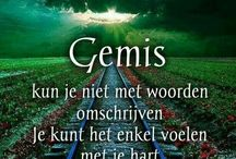 gemis