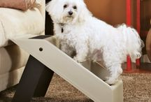 Pet Supplies, Furniture & Beds