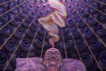 secrecy of universe