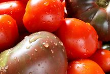 Totally Tomatoes!! / All the tricks and tips necessary to grow the best tomatoes ever and then to cook and preserve them...