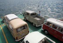 Bugs n busses / Volkswagen