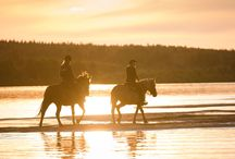 Activities during the summer in Rovaniemi, Lapland, Finland