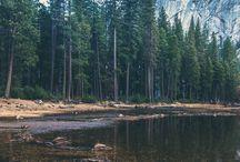 Yosemite / by Jessica Long