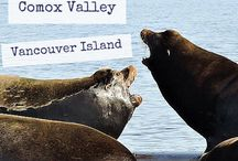 Things To Do On Vancouver Island / Whether you are a Vancouver Island local or dream of traveling here one day. This board is sure to inspire and help you plan some awesome experiences!