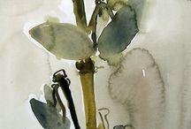 Flores ,plantas y aves