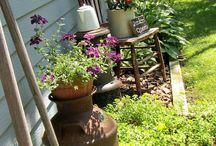 Garden / by Alice Hartman