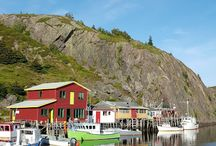 For the love of Newfoundland