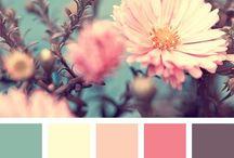 Guest Bedroom Decor Paint Colors
