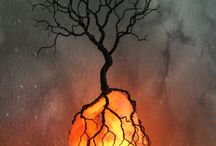 Cooper Tree