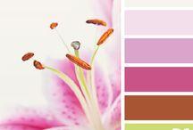 Värikarttoja - Color palettes